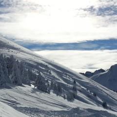 Une pluie de Podiums pour le Ski-Club Châtel en Grands Prix