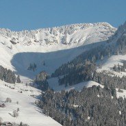 Ski Pass Evasion