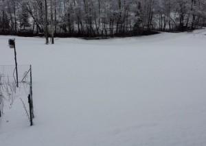 Retour de l'hiver le 23 mars 2014