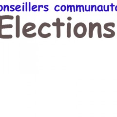 Canton d'Evian : le binôme UMP l'emporte