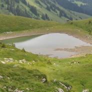 Une autre vision sur le Lac Vert