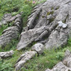 Séisme mineur dans le massif du Chablais-Giffre