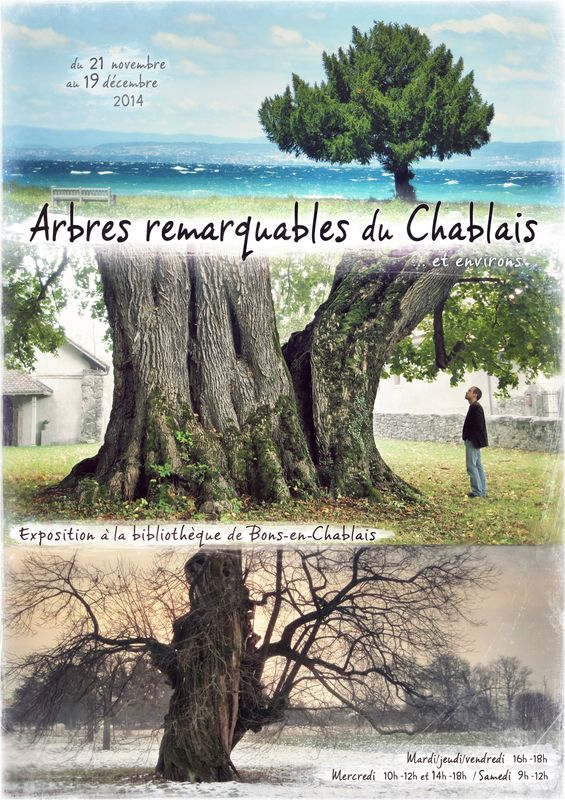 Expo Arbres remarquables