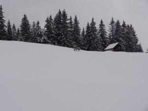 2015-02-24 Sortie PF - Belair par Abondance - 0016_1