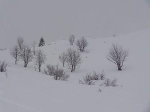 2015-02-24 Sortie PF - Belair par Abondance - 0027_1