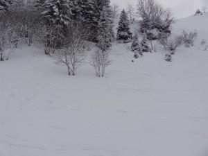 2015-02-24 Sortie PF - Belair par Abondance - 0030_1