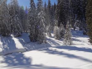 2015-02-27 Sortie PF - Ubine par Vacheresse - 0018_1