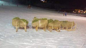 Concours luge1