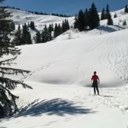 Randonnée à ski à Bassachaux