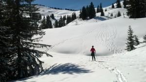 Rando ski Bassachaux