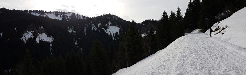 Panorama sur le versant sud du Mont de Grange © B. Guffroy infoval74.com | valdabondance.com