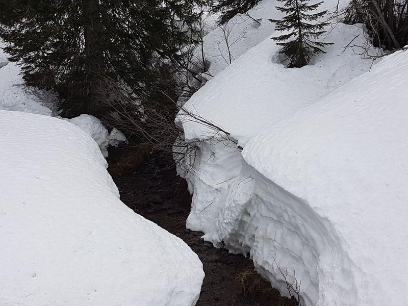 Bonne épaisseur de neige au-dessus de 1700m en ce début avril © B. Guffroy infoval74.com | valdabondance.com