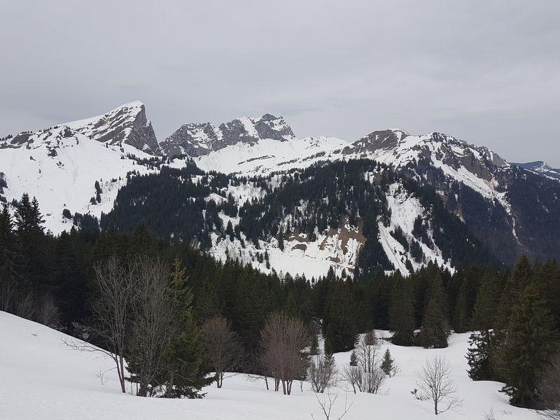 Le versant avalancheux de la route des chalets de Lens © B. Guffroy infoval74.com | valdabondance.com
