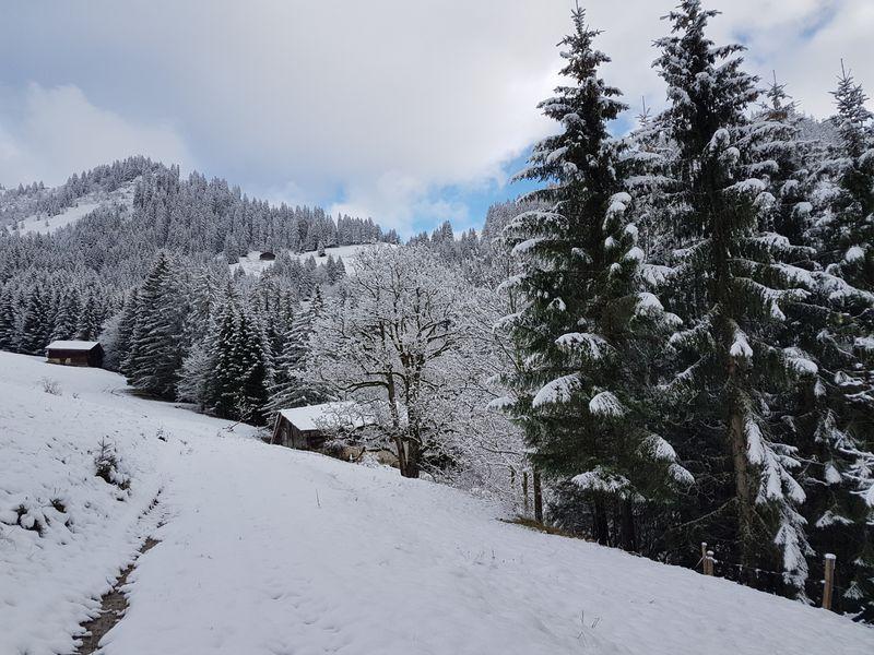 Chute de neige du 6 novembre 2016 © valdabondance.com