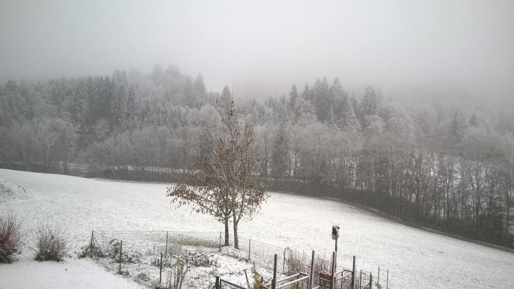 neige1116-1jpg
