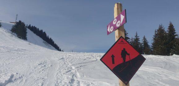 Parcours de ski de randonnée : Pointe des Follys